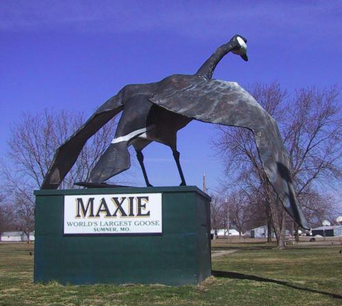 Maxie the Goose